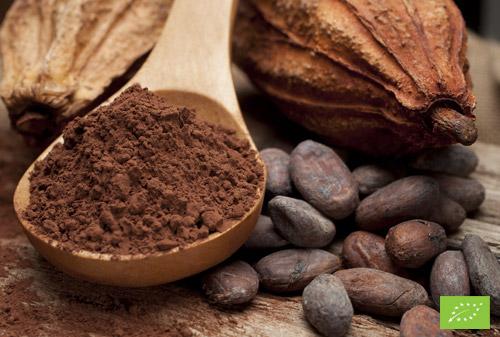 Cacao in polvere 20/22 Biologico