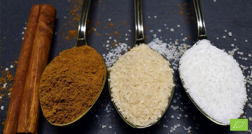 Tipi di Zucchero di Canna Bio