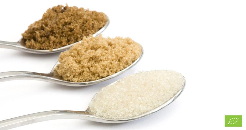 Zucchero Biologico Ingrosso