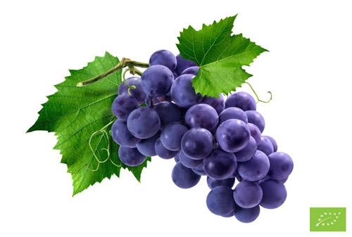 Zucchero d'uva Bio